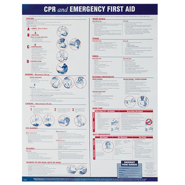 CPR/First Aid Poster #2499
